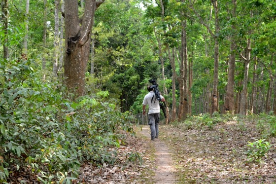 Sepahijala Wildlife Sanctuary - tripura tourism places